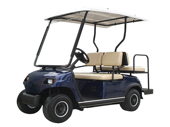 Battery for golfcart